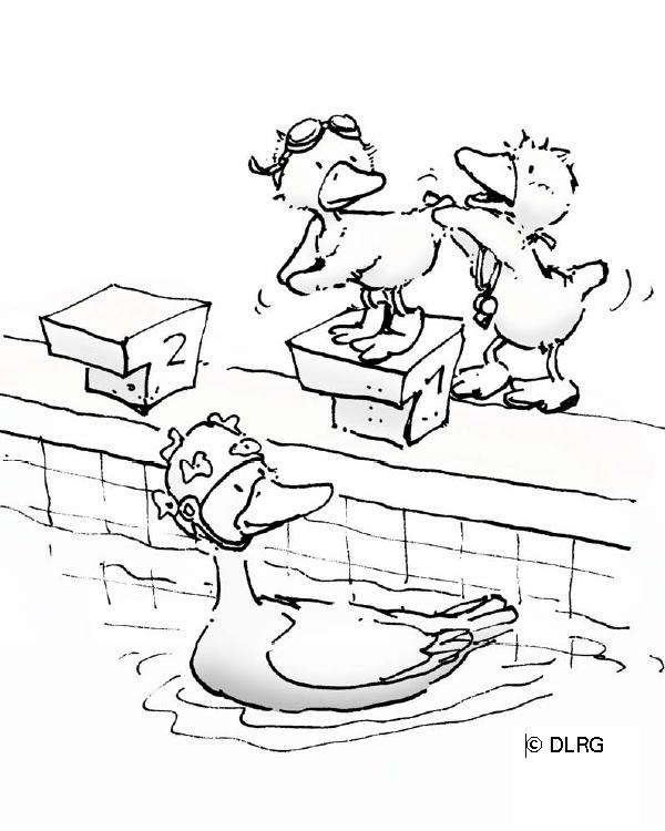 malvorlagen baderegeln  dlrg ortsgruppe potsdam ev
